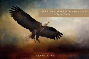New Mailing List - Nature